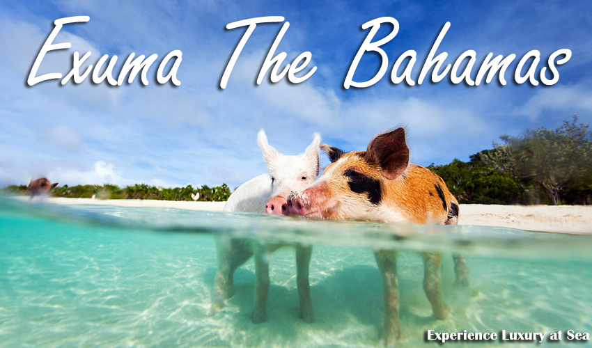 Exuma Yacht Charter | Pig Island Yacht Rental by the Day